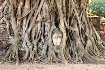 15-ayutthaya