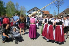 Tiago e Tales no festival Maibaum