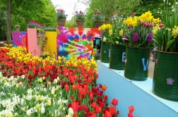 Flower Power, tema do Keukenhof 2019