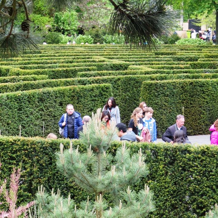 Labirinto de plantas no Keukenhof