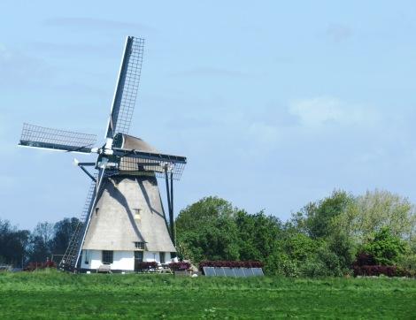 Moinho de vento típico holandês