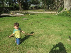 Tales explorando o jardim